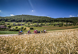 Riders at Precna during last Stage 4 of 24th Tour of Slovenia 2017 / Tour de Slovenie from Rogaska Slatina to Novo mesto (158,2 km) cycling race on June 18, 2017 in Slovenia. Photo by Vid Ponikvar / Sportida