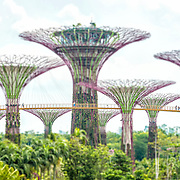 Tilt Shift Gardens by the Bay 2