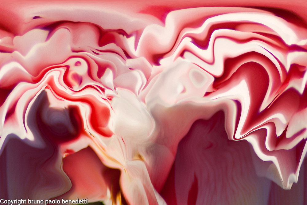 abstract fluid floating layers in gleaming white and pink color on dark blured background with shades