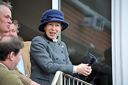 HRH The PRINCESS ROYAL at the Hennessy Gold Cup at Newbury Racecourse, Berkshire on 26th November 2011.