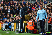 Fulham FC manager Slavisa Jokanovic during the EFL Sky Bet Championship match between Fulham and Queens Park Rangers at Craven Cottage, London, England on 1 October 2016. Photo by Jon Bromley.