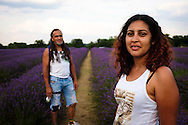 Arlene and Tony, lavender fields, south London