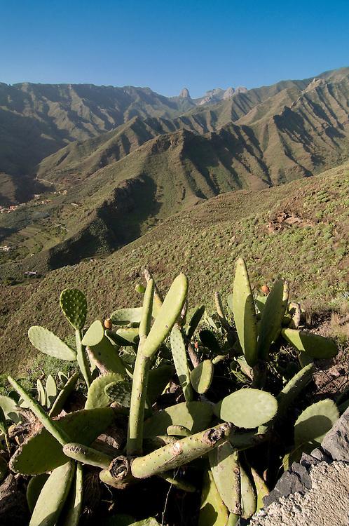 The rocky island La Gomera, Canary Islands, Spain