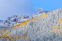 New snow and storm clouds shroud mountain walls along the Cimarron River in The Uncompahgre Range & wilderness with autumn color; Uncompahgre National Forest, Owl Creek Pass, Colorado