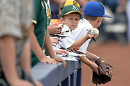 PEORIA, AZ - MARCH 05:  An Oakland Athletics fan holds up his autographed ball prior to the spring training game against the Seattle Mariners at Peoria Stadium on March 5, 2017 in Peoria, Arizona.  (Photo by Jennifer Stewart/Getty Images)
