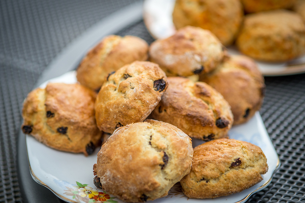 Plate of raisin scones ready to be eaten during afternoon tea, Richmond, Yorkshire, England