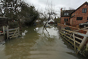 Flooded homes in Wraysbury near Staines. Flood waters remain high after last weeks flooding across the Thames valley. UK<br /><br />Picture by Zute Lightfoot