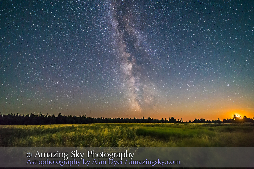 The Milky Way as the 5-day waxing Moon was setting on the plateau of the Cypress Hills in Alberta, at the Horseshoe Canyon viewpoint area. <br /> <br /> Sagittarius is just setting. Saturn is the bright star right of centre above the tree tops, amid the Dark Horse in the Milky Way,<br /> <br /> This is a composite of 9 stacked exposures for the ground, mean combined to smooth noise, and one exposure for the sky, all 30 seconds at f/2.5 with the Rokinon 14mm lens and Canon 6D at ISO 6400, taken as part of a time-lapse sequence.