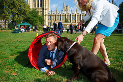© Licensed to London News Pictures. 08/09/2016. London, UK. MP for South Thanet, CRAIG MACKINLAY performs with his 2 year old chocolate labrador 'Libby' whilst taking part in Westminster Dog of the Year competition in Victoria Tower Gardens, London on Thursday, 8 September 2016. Photo credit: Tolga Akmen/LNP