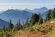 See Three Fingers Mountain (6854 feet) from Mount Dickerman Trail #710 in Mount Baker-Snoqualmie National Forest. Start hiking from the trailhead on the Mountain Loop Highway east of Verlot, Washington, USA.