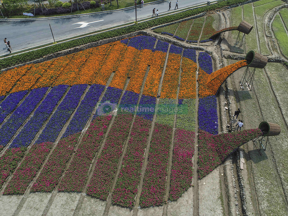 April 27, 2018 - Hangzhou, China - Tourists enjoy flowers of different shapes at the Flower Festival held at Longmen Ancient Town in Hangzhou, east China's Zhejiang Province. (Credit Image: © SIPA Asia via ZUMA Wire)