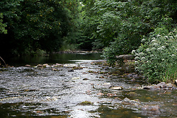 UK ENGLAND ENGLAND SHROPSHIRE LLANYBLODWEL 1JUL15 -The river Tanat in Llanyblodwel, part of the river Severn catchment area. <br /> <br /> <br /> <br /> jre/Photo by Jiri Rezac / WWF UK<br /> <br /> <br /> <br /> &copy; Jiri Rezac 2015