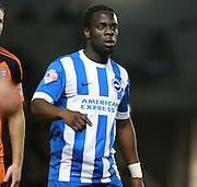 Brighton striker Elvis Manu during the Sky Bet Championship match between Brighton and Hove Albion and Ipswich Town at the American Express Community Stadium, Brighton and Hove, England on 29 December 2015. Photo by Bennett Dean.
