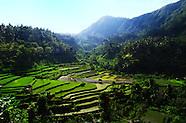 Bali - landscapes