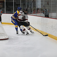 Men's Ice Hockey: Lake Forest College Foresters vs. The College of St. Scholastica Saints