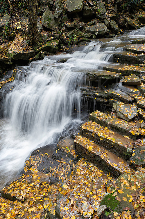Waterfall and trail steps in a woods path surrounded by fallen yellow leaves, Trough Creek State Park near Raystown Dam, Huntingdon, Pennsylvania, PA, USA.
