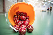 The National Fast Bowling Academy event at The Herts & Essex Cricket Centre (HECC), Tharbies Farm, Rook End, High Wych, Sawbridgeworth CM21 0LL, on Sunday 21st October 2018.