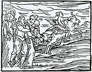 'The Devil, in the form of a flying goat, carrying a witch to the Sabbath.  Woodcut from ''Copmpendium maleficarum'', Milan, 1608, by Francesco Maria Guazzo.'