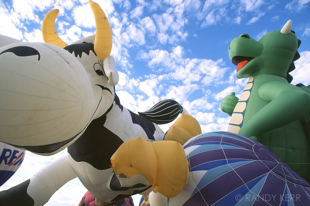 Cow and dinosaur balloons
