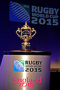 LONDON, ENGLAND - DECEMBER 03:  The Webb Ellis trophy is displayed prior to the IRB Rugby World Cup 2015 pool allocation draw at the Tate Modern on December 3, 2012 in London, England.  (Photo by David Rogers - Pool/Getty Images for IRB)