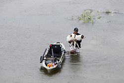 (170827) -- HOUSTON, Aug. 27, 2017 (Xinhua) -- A man holding his dog walks in water in great Huston area, Texas, the United States, Aug. 27, 2017. Widespread and worsening flood conditions prompted the closure of nearly every major road in Houston as the outer bands of Hurricane Harvey swept through the Houston area over the weekend. Latest news reports said the storm death toll has climbed to at least 5. (Xinhua/Song Qiong) (Photo by Xinhua/Sipa USA)