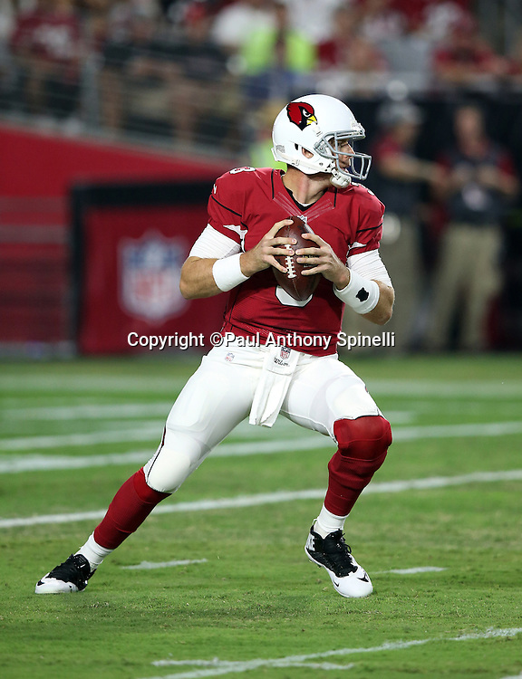 Arizona Cardinals quarterback Carson Palmer (3) drops back to pass during the 2015 NFL preseason football game against the San Diego Chargers on Saturday, Aug. 22, 2015 in Glendale, Ariz. The Chargers won the game 22-19. (©Paul Anthony Spinelli)
