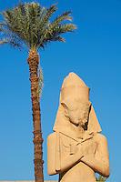 Egypte, Haute Egypte, vallée du Nil, Louxor, Karnak, classé Patrimoine Mondial de l'UNESCO, temple dédié au Dieu Amon, statue de Ramsès II // Egypt, Nile Valley, Luxor, Thebes, Karnak Temple, UNESCO World Heritage Site, Statue of Ramses II,