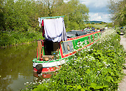 Kennet and Avon canal stretch between All Cannings and Alton Barnes, Vale of Pewsey, Wiltshire, England