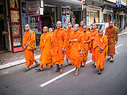 "31 JANUARY 2013 - PHNOM PENH, CAMBODIA:  Cambodian Buddhist monks walk back to Wat Ounalom after praying for former King Norodom Sihanouk at the Royal Palace. Norodom Sihanouk (31 October 1922 - 15 October 2012) was the King of Cambodia from 1941 to 1955 and again from 1993 to 2004. He was the effective ruler of Cambodia from 1953 to 1970. After his second abdication in 2004, he was given the honorific of ""The King-Father of Cambodia."" Sihanouk served two terms as king, two as sovereign prince, one as president, two as prime minister, as well as numerous positions as leader of various governments-in-exile. He served as puppet head of state for the Khmer Rouge government in 1975-1976. Most of these positions were only honorific, including the last position as constitutional king of Cambodia. Sihanouk's actual period of effective rule over Cambodia was from 9 November 1953, when Cambodia gained its independence from France, until 18 March 1970, when General Lon Nol and the National Assembly deposed him. Upon his final abdication, the Cambodian throne council appointed Norodom Sihamoni, one of Sihanouk's sons, as the new king. Sihanouk died in Beijing, China, where he was receiving medical care, on Oct. 15, 2012. His funeral procession, which will wind through Phnom Penh is Friday, Feb.1 and his cremation is on Feb. 4, 2013. Over a million people are expected to attend the service.    PHOTO BY JACK KURTZ"