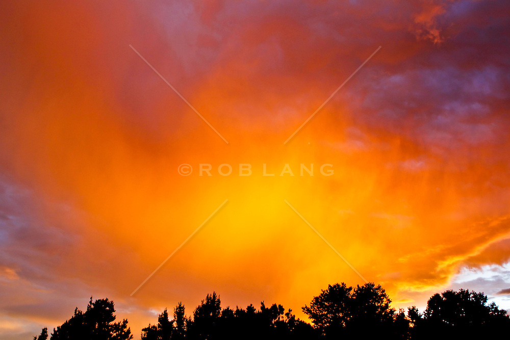 the most amazing sunrise over trees in Santa Fe, New Mexico