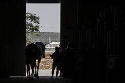 Stables<br /> CHI Al Shaqab - Doha 2013<br /> © Dirk Caremans