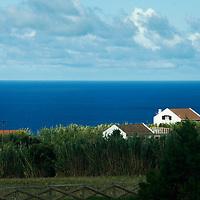 Europe, Portugal, Azores. Scene of the Azores (Ponta Delgada, São Miguel island.