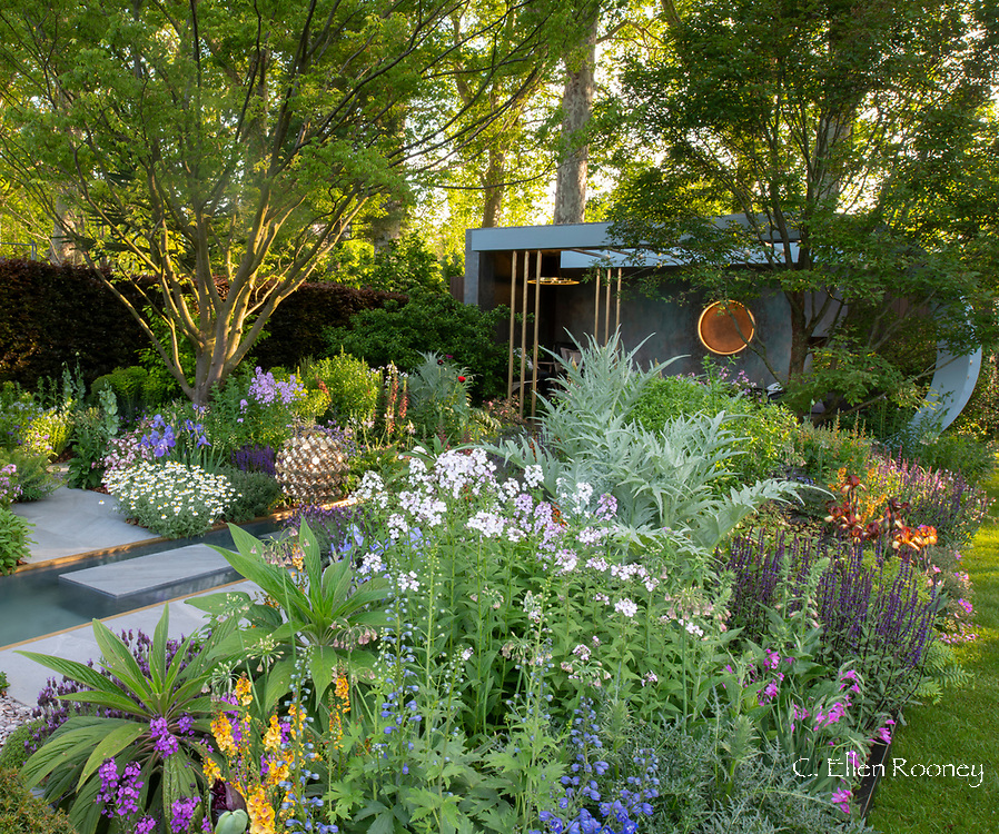 Mixed perennials in the Morgan Stanley Garden designed by Chris Beardshaw and winner of a gold medal in the show garden category at the Chelsea Flower Show 2019