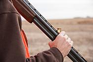 Pheasant hunting, North Dakota, USA