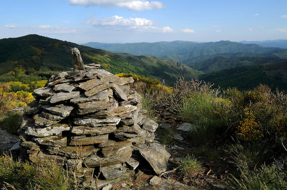 France, Languedoc Roussillon, Lozère (48), Cevennes, Mont Lozère, montagne du Bougès, col de la Baraquette