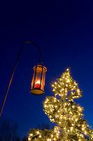 A brightly lit lantern and christmas tree, two elements symbolizing the Christmas season.