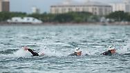 Pro Male 70.3 competitors on the swim course. Ironman Cairns and Ironman Cairns 70.3 Race. 2013 Ironman Cairns Triathlon Festival. Cairns, Queensland, Australia. 09/06/2013. Photo By Lucas Wroe