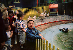 children at the children's zoo in Central Park's New York Zoo