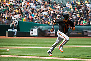 San Francisco Giants left fielder Gorkys Hernandez (7) watches the ball after bunting against the Oakland Athletics at Oakland Coliseum in Oakland, California, on March 25, 2018. (Stan Olszewski/Special to S.F. Examiner)