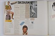 Noel Skehan, Hurling,