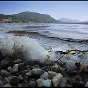 Il Parco Naturale Laghi di Avigliana, istituito nel 1980, è situato allo sbocco della Valle di Susa, ai piedi del Monte Pirchiriano su cui sorge l'antica abbazia della Sacra di San Michele, in una caratteristica zona dell'anfiteatro morenico di Rivoli-Avigliana, distante poco più di 20 chilometri da Torino. nella foto schiuma e inquinamento sulle rive del lago