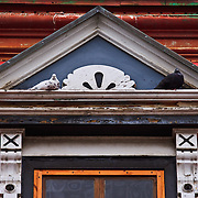Two pigeons sit above window of residential building in Old Town, Montreal, Quebec, Canada