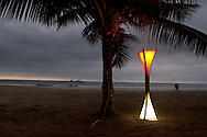 Beach view in Puerto Lopez.  A tree with an electrical outlet and a lamp to light up the night.