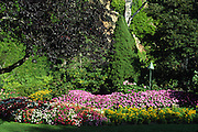 colorful flower beds and trees:; Sunken Garden; Buchart Gardens; Vancouver Island; British Columbia; Canada