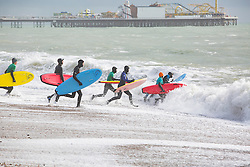 © Licensed to London News Pictures. 28/01/2017. Brighton, UK. Members of the Brighton Surf Life Saving Club brave the notorious Brighton shoredumd to take part in their weekly sea swimming training. Photo credit: Hugo Michiels/LNP