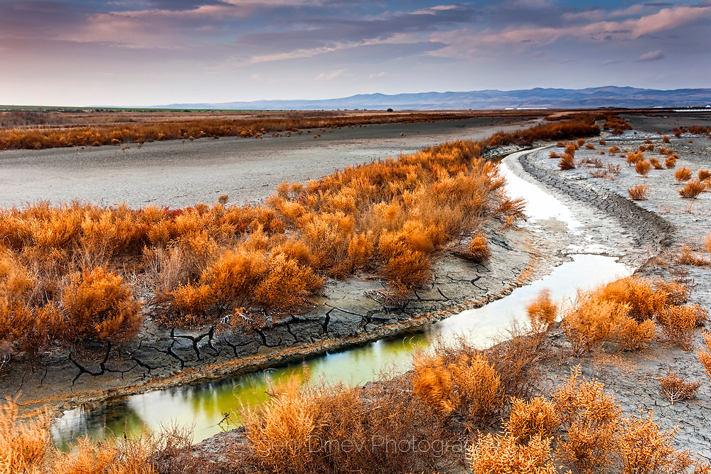 Curved stream in Atanasovsko lake at sunset