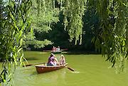Palmengarten, Ruderboote am See, Frankfurt am Main, Hessen, Deutschland | Palmengarten, botanical garden in Frankfurt, lake and rowing boats, Germany