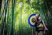 JAPAN, TOKYO, April 2013 - Emi Wakita, a young woman who define her style between scary and cute in a bamboo forest. She use white rice powder as the geisha, blue lips, long false lash, red feather arround the eyes and two differents wigs [FR] Emi wakita, une jeune femme définissant son style entre le mignon et l'effrayant en Dans une foret de bambou. Elle se farde de blanc avec la poudre de riz comme le font les geisha, ses levres sont bleues, elle porte des faux-cils et des plumes rouge au contour des yeux ainsi que deux perruques.