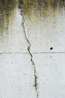 Crack in a concrete wall.