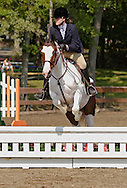 Middletown, N.Y. - A competitor rides her horse over a jump during the English riding part of the Middletown Rotary Club's 63rd annual Charity Horse Show at Fancher Davidge Park on Sept. 17, 2006.